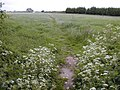 Footpath near Saxby, Yapton - geograph.org.uk - 438824.jpg