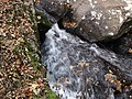 Fox Creek (west of Troutdale, Virginia, USA) 7 (30143958880).jpg
