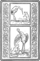Frontispiece from The Fables of Æsop (Jacobs).png
