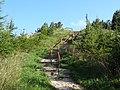 Góra Cisowa - panoramio (1).jpg