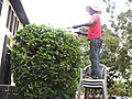 Gardener in a senior high school pruning a hedge.jpg