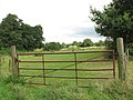 Gate into a pasture - geograph.org.uk - 1440703.jpg
