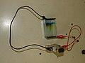 Gel electrophoresis.jpg