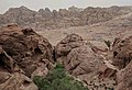 General View in Petra Jordan.jpg