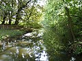 Gently flows the Yare (geograph 2090923).jpg