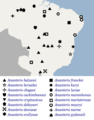 Geographical distribution of Ananteris scorpions.png