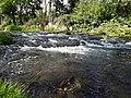 Gera River Plaue 2.jpg