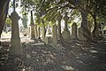 Glasnevin Cemetery - (442813046).jpg
