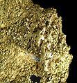 Gold-270417.jpg