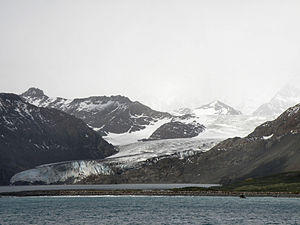 Gold Harbour - Gold Harbour and Bertrab Glacier
