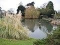 Golders Green, Golders Hill Park Lily Pond - geograph.org.uk - 1712269.jpg