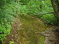 Gorze - ruisseau de Parfond Val.JPG