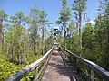 Grand Bay Wetlands Management Area Kinderlou Tower 01.JPG