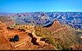 Grand Canyon (5824859957).jpg