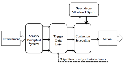 supervisory attentional system wikipedia