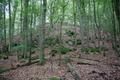 Grebenau Schwarz NR 162265 Auerberg W.png