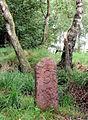 Grenzstein 3 Duvenstedter Brook WohldorfOhlstedt4.JPG