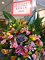 HKCL 香港中央圖書館 CWB 展覽 exhibition flowers February 2019 SSG 15.jpg