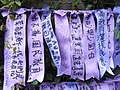HK Admiralty Tamar Square Ribbon message 020 Purple 9-Sept-2012.JPG
