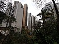 HK ML 半山區 Mid-levels 地利根德里 Tregunter Path view buildings February 2020 SS2 04.jpg