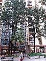 HK SSP 荔枝角 Lai Chi Kok 美孚新邨 Mei Foo Sun Chuen 萬事達廣場 Mount Sterling Mall and park February 2019 SSG 15.jpg