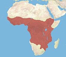 Habitat range of the African civet.jpg