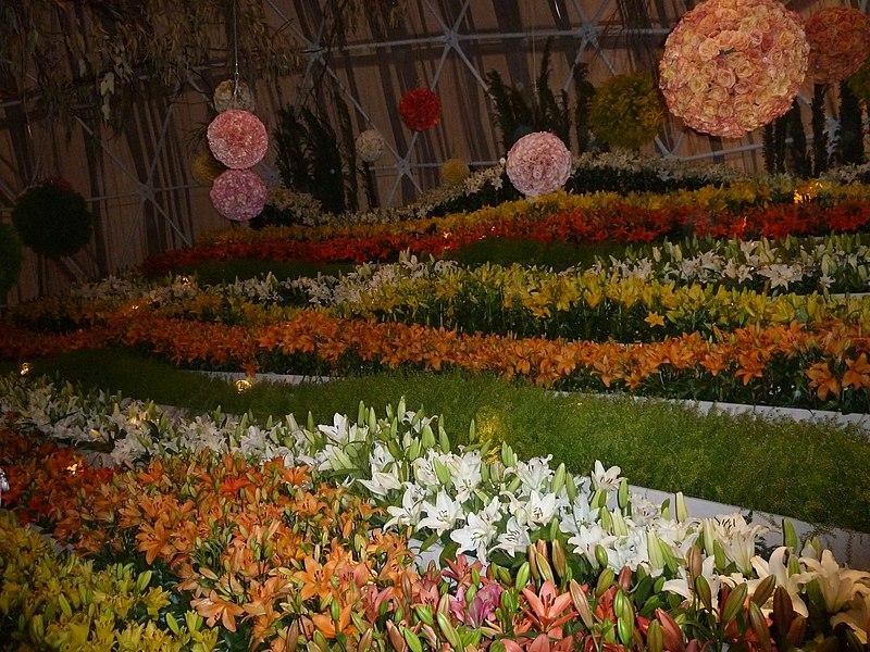File:Haifa International Flower Exhibition P1130921.JPG