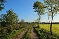 Halverde Naturschutzgebiet Kreienfeld 05.JPG