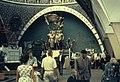 Hammond Slides Moscow 167. Cosmos pavilion.jpg