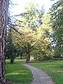 Harbke Schlosspark - panoramio.jpg