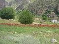 Hasankeyf (40443334901).jpg