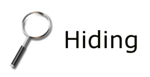 Hiding Icon