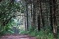 Hiking at Sherburne National Wildlife Refuge (35740935100).jpg