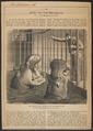 Hippopotamus amphibius - 1866 - Print - Iconographia Zoologica - Special Collections University of Amsterdam - UBA01 IZ21900037.tif