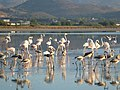 Holidays Greece - panoramio (405).jpg