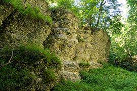 Horn-Bad Meinberg - 2014-06-06 - LIP-020 - Bielsteinschlucht (7).jpg