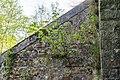 Horn-Bad Meinberg - 2015-05-10 - LSG-4118-0001 (5).jpg