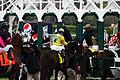 Horse Racing (3432412110).jpg