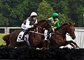 Horseracing (17843472775).jpg