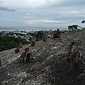 Hua Hin, Hua Hin District, Prachuap Khiri Khan 77110, Thailand - panoramio (20).jpg