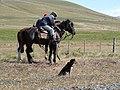 Huasos sur leurs chevaux en 2009.jpg