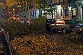 Hurricane Sandy on 101st St.JPG