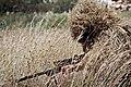 IDF-CombatEngineeringSniper001.jpg