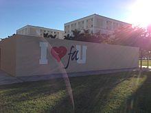 You University of florida porn stars