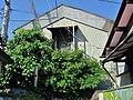 Igarashi Shoten Warehouse.jpg