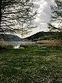Il lago sul tappeto di margherite.jpg