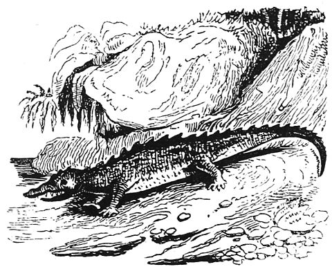 Ill dict infernal p0207-191 crocodiles.jpg