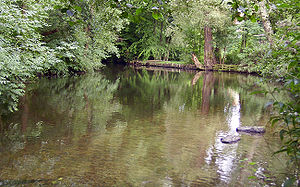Ilmenau (river) - The Ilmenau near Uelzen