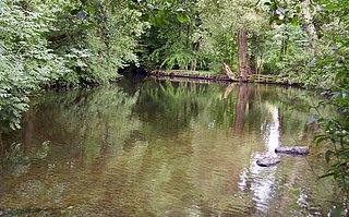 Ilmenau (river) river in Lower Saxony, Germany