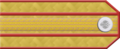 Imperial Russian Army Col 1917 h.png